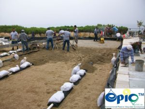 Sand Import and compaction